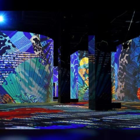 """صور: دبي.. حاضنة فنون المستقبل تفتح معرض """"إنفينيتي دي لوميير"""" الرقمي!"""