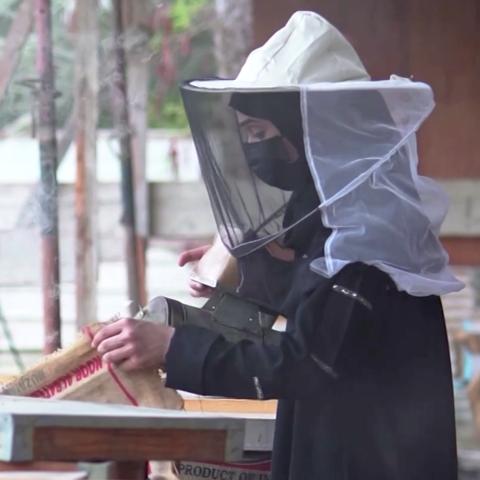 صور: فاطمة الميلاد.. سعودية حوّلت هواية تربية النحل إلى استثمار!