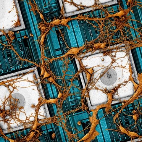 صور: شركة سامسونغ تسعى إلى نسخ العقل البشري إلى شريحة ثلاثية الأبعاد!