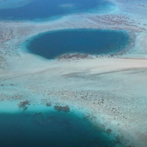 ${rs.image.photo} هيئة البيئة في أبوظبي ترصد ثقباً أزرقاً نادراً، فماذا تعرف عن هذه الظاهرة الطبيعية؟